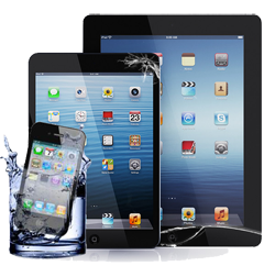 Apple_collection-250-crack-water